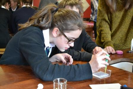 Gairloch High pupil Catherine Macrae preparing her DNA profile experiment.