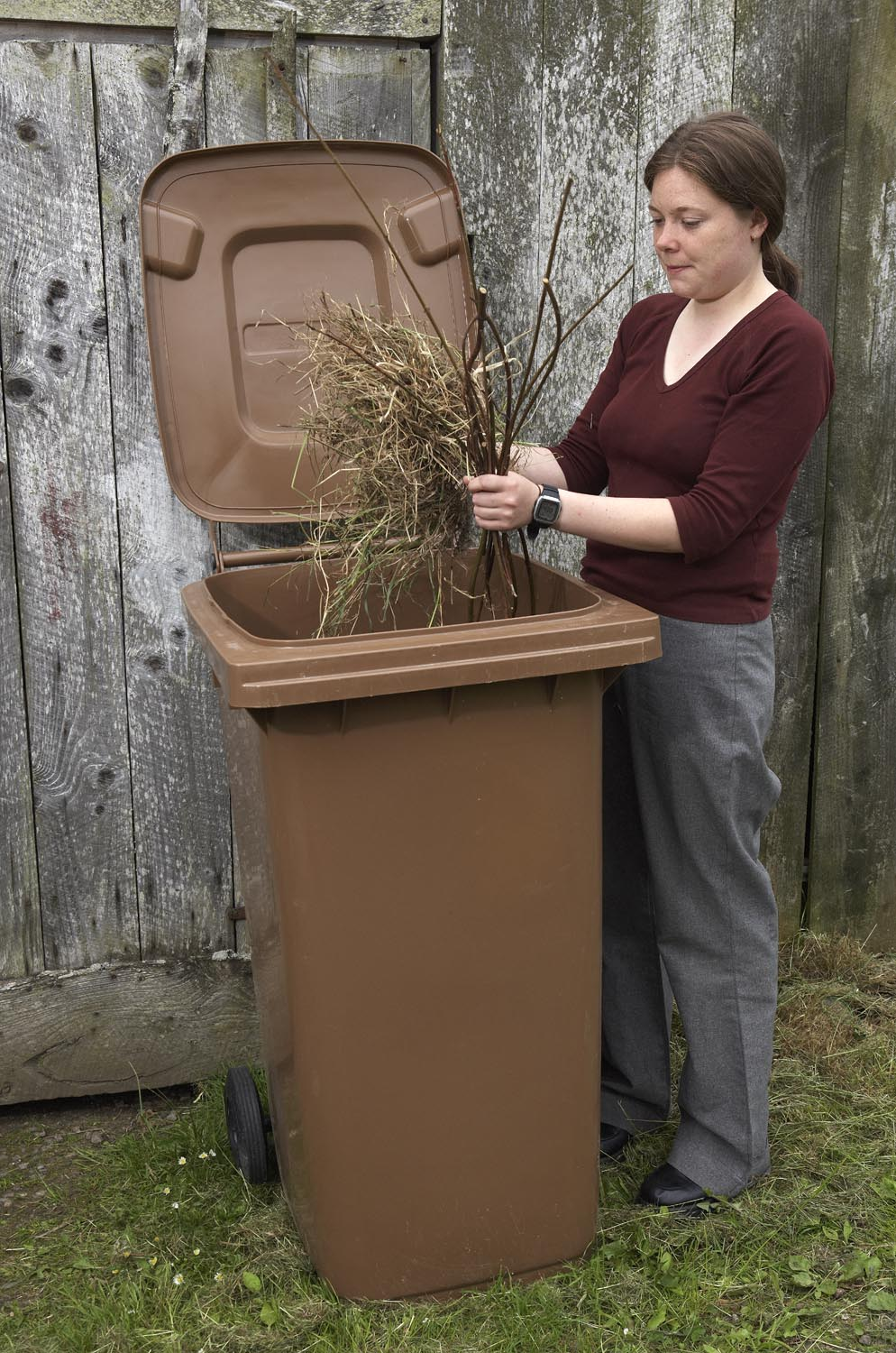 brown bin for garden waste